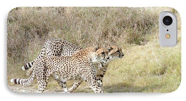 IPhone Case featuring the photograph Cheetah Trot 2 by Fraida Gutovich