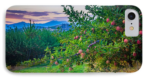 Chelan Apple Branch IPhone Case by Inge Johnsson