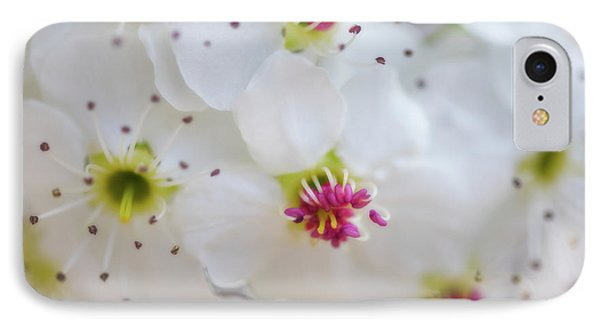 IPhone Case featuring the photograph Cherry Blooms by Darren White