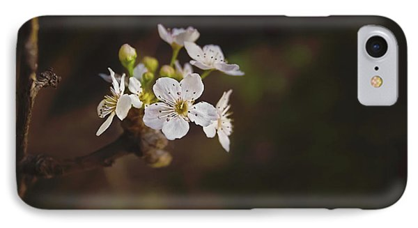 Cherry Blossom IPhone Case by April Reppucci