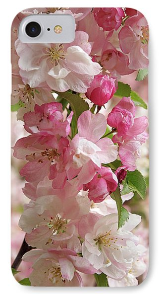 IPhone Case featuring the photograph Cherry Blossom Closeup Vertical by Gill Billington