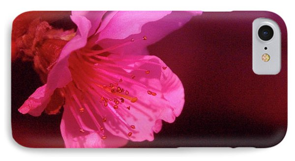 Cherry Blossom Phone Case by Jeff Swan