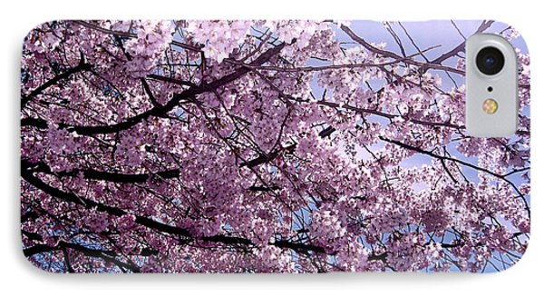 Cherry Blossom Season Phone Case by Ariane Moshayedi