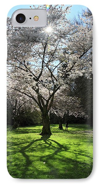 Cherry Blossom Sunshine Phone Case by Pierre Leclerc Photography