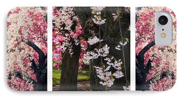 Cherry Blossom Triptych IPhone Case by Jessica Jenney