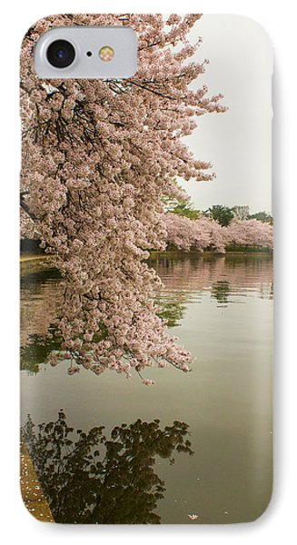 Cherry Blossoms Along The Tidal Basin 8x10 IPhone Case