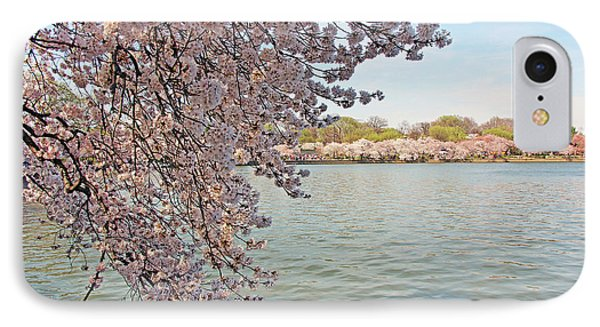 Cherry Blossoms Around The Tidal Basin IPhone Case by Cora Wandel