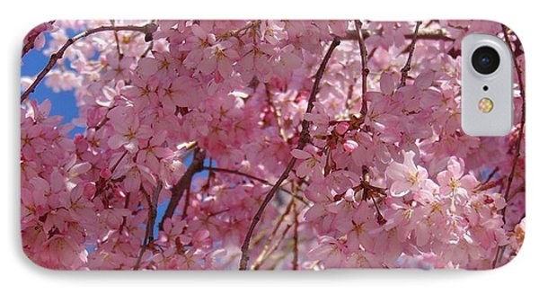 Cherry Blossoms IPhone Case by Charlotte Gray