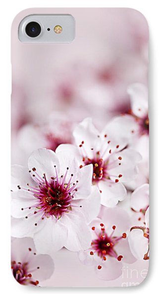 Cherry Blossoms IPhone Case by Elena Elisseeva