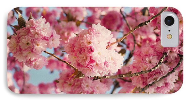 Cherry Blossoms Galore IPhone Case