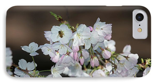 Cherry Blossoms IPhone Case by Glenn Franco Simmons