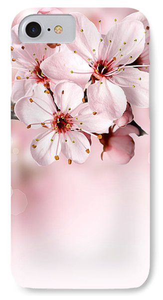 Cherry Blossoms In Bloom  IPhone Case