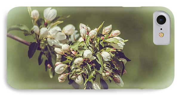 Cherry Blossoms IPhone Case by Yeates Photography