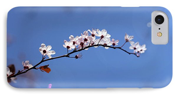 Cherry Flowers With Lens Flare IPhone Case by Helga Novelli