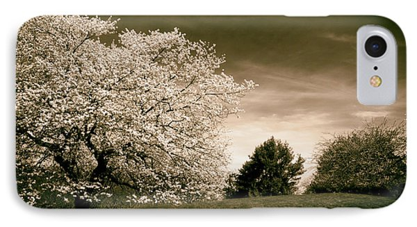 Spring Cherry In Sepia IPhone Case by Jessica Jenney