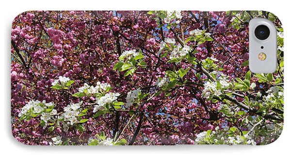 Cherry Tree And Pear Blossoms IPhone Case