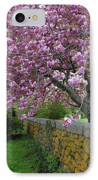 Cherry Tree, Cape Cod IPhone Case