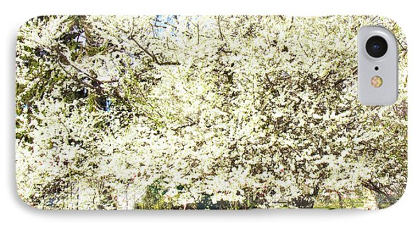 Cherry Trees In Blossom IPhone Case