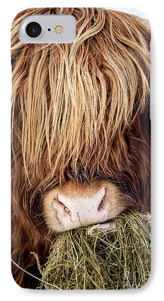 Chewing The Cud IPhone Case by Tim Gainey
