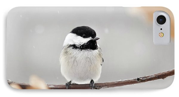IPhone Case featuring the photograph Chickadee Bird In Snow by Christina Rollo