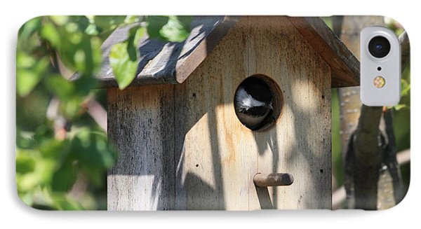 Chickadee In Birdhouse IPhone Case