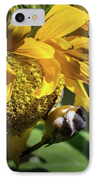 Chickadee Sunflower IPhone Case by Bill Wakeley