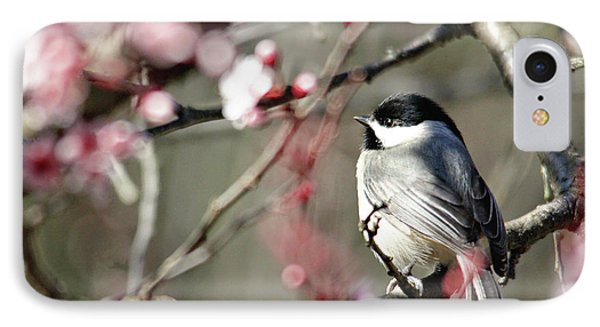 Chickadee IPhone Case by Trina Ansel