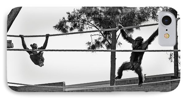 IPhone Case featuring the photograph Chimps In Black And White by Miroslava Jurcik