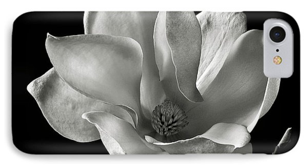 IPhone Case featuring the photograph Chinese Magnolia by Endre Balogh