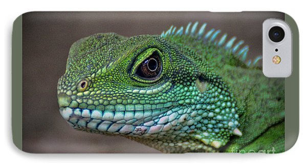 Chinese Water Dragon IPhone Case by Savannah Gibbs