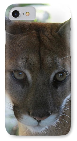 IPhone Case featuring the photograph Chinook by Laddie Halupa
