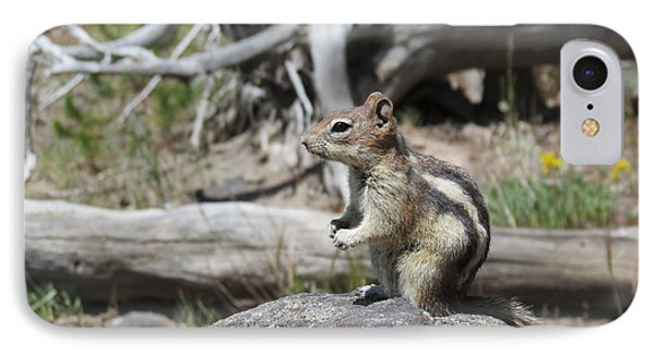 Chipmunk At Yellowstone IPhone Case by Ausra Huntington nee Paulauskaite