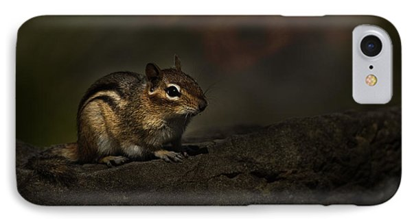 IPhone Case featuring the photograph Chipmunk On Rock by Michael Cummings
