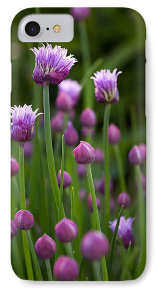 Chives IPhone Case by Patrick Downey