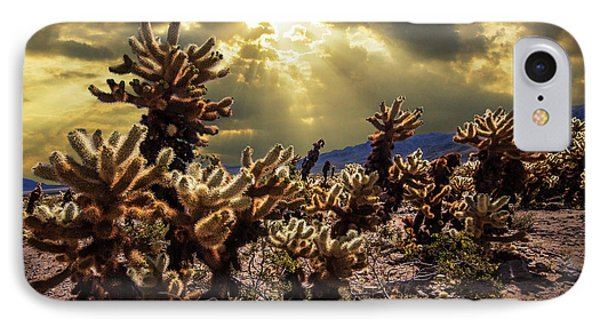 IPhone Case featuring the photograph Cholla Cactus Garden Bathed In Sunlight In Joshua Tree National Park by Randall Nyhof