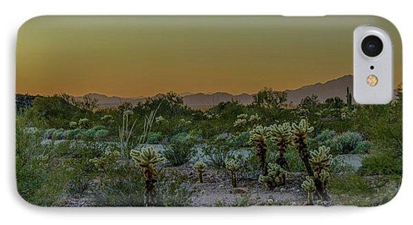 Cholla Desert Sunset IPhone Case