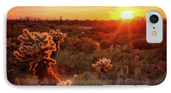 IPhone Case featuring the photograph Cholla Sunset In The Sonoran  by Saija Lehtonen