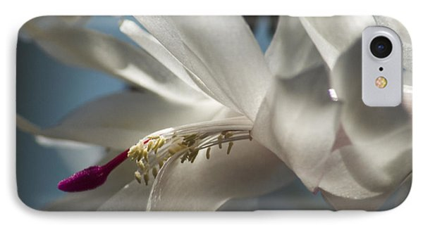 IPhone Case featuring the photograph Christmas Cactus Blossom by Yulia Kazansky