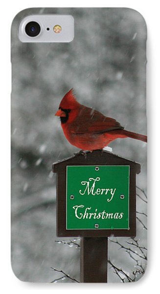 Christmas Cardinal Male IPhone Case