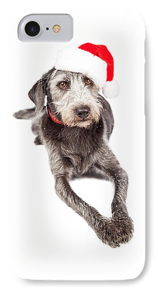Christmas Santa Terrier Dog Laying IPhone Case by Susan Schmitz