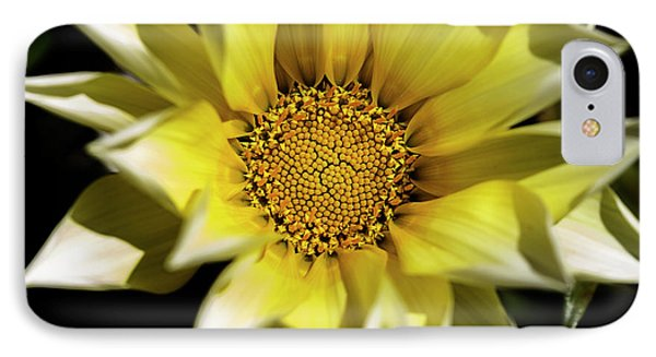 IPhone 7 Case featuring the photograph Chrysanthos by Linda Lees