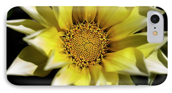 IPhone Case featuring the photograph Chrysanthos by Linda Lees