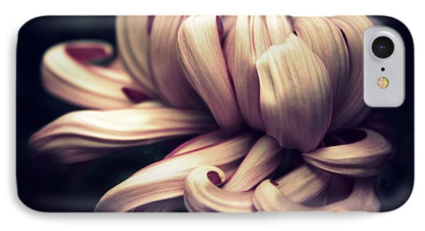 Chrysanthemum Curls IPhone Case by Jessica Jenney