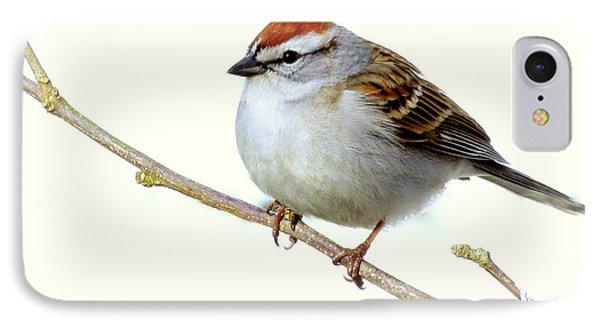 Chubby Sparrow IPhone Case