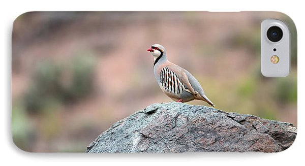 IPhone Case featuring the photograph Chukar Partridge 2 by Leland D Howard