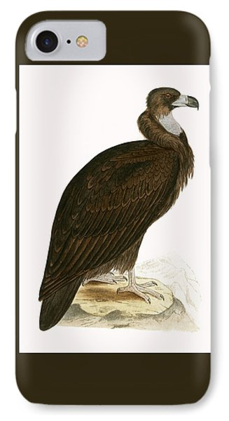 Cinereous Vulture IPhone Case by English School