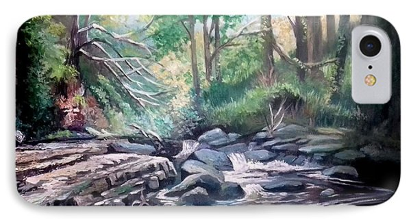 Clare Glens ,co Tipparay Ireland IPhone Case by Paul Weerasekera