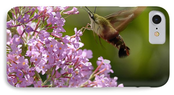 Clearwing Pink IPhone Case