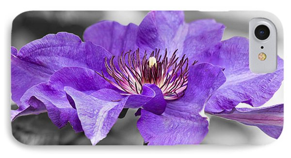 Clematis IPhone Case by Scott Carruthers