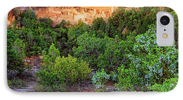 Cliff Palace At Mesa Verde National Park - Colorado Phone Case by Jason Politte